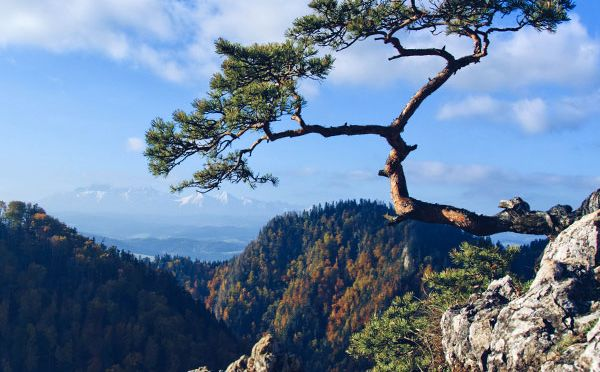 Dunajec Castle – a trip to the south of Lesser Poland #video